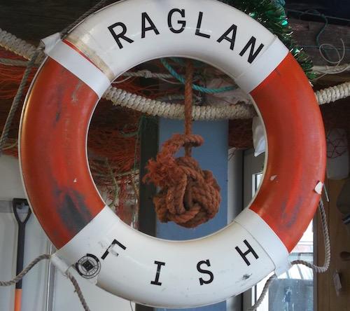 raglanfish.jpg