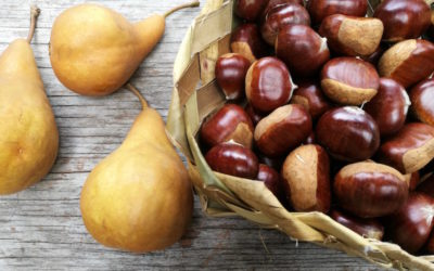 Chestnuts – catch them while you can