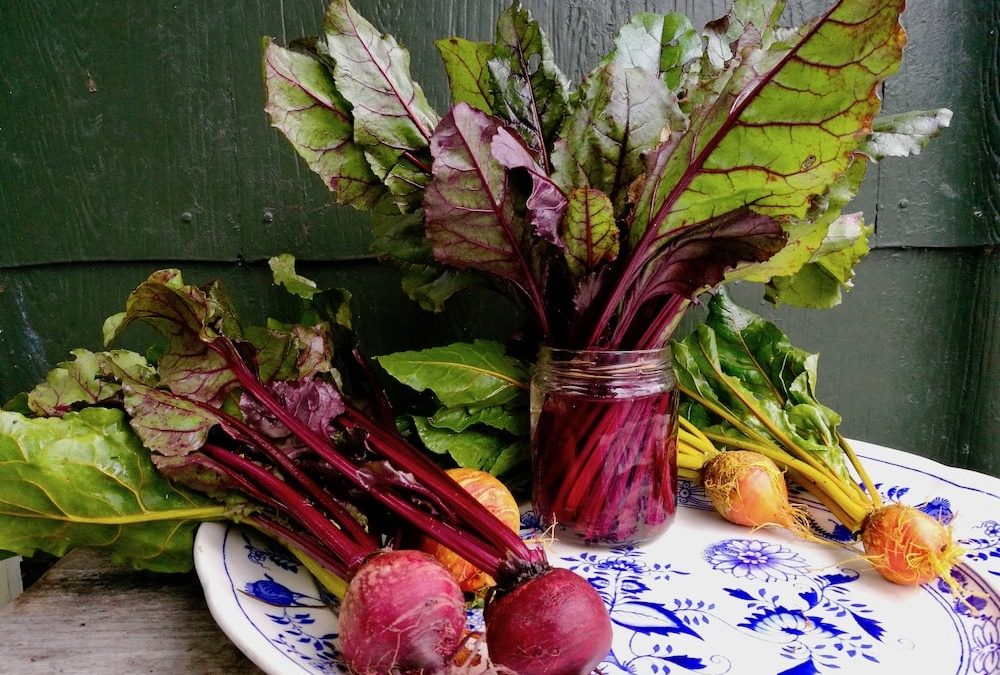 Beet leaves and bunch
