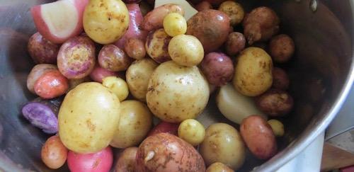 Madhur's potatoes