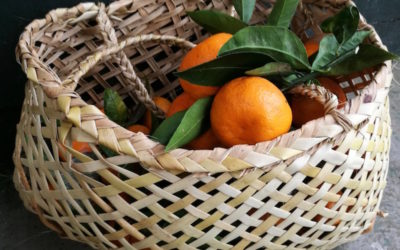 Free fruit – foraging ethics