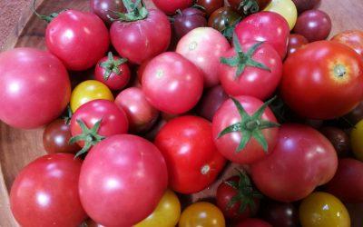 Organics – a line in the soil?